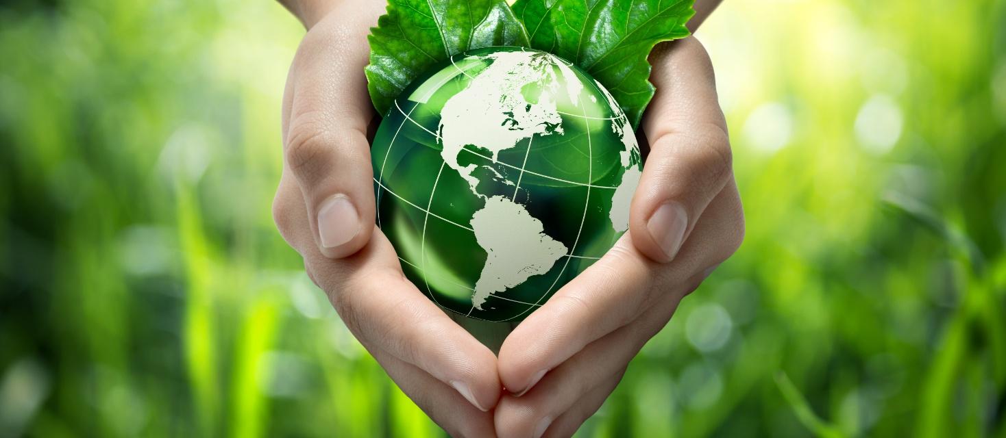 環境活動 ECOLOGY
